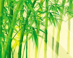 Гадание на бамбуке